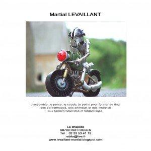 levaillant-copie-300x300